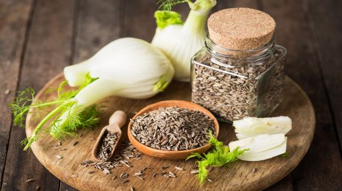 Find Out About Phenomenal Fennel