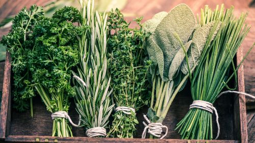 Herbs: Fully Loaded